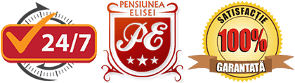 Pensiunea Elisei Timisoara Logo